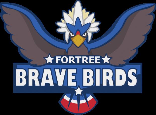 BraveBirds